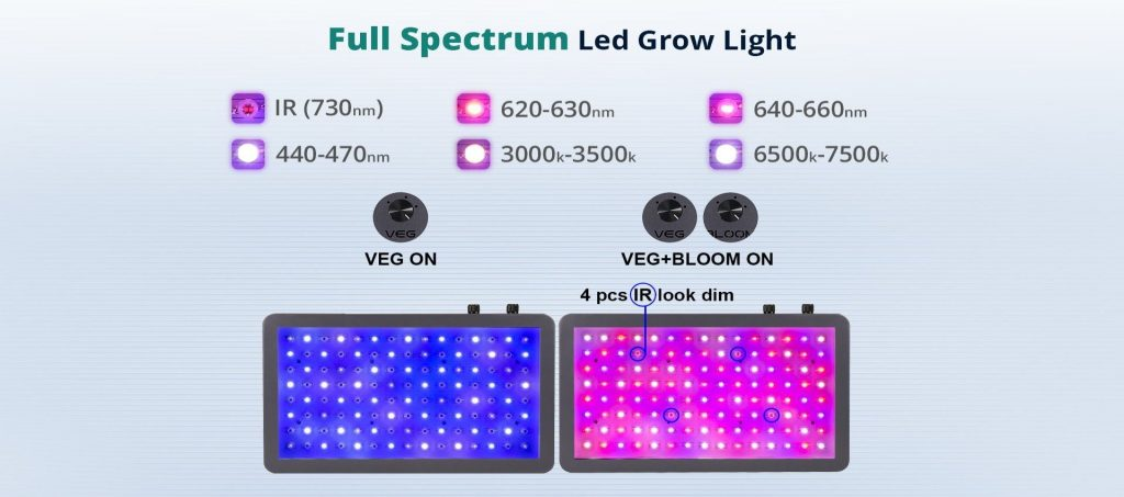 viparspectra 1200 review